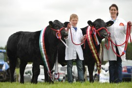 Armagh show pictures online