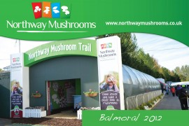 Northway Mushroom Video Balmoral 2012