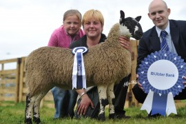 Antrim Show Pictures online