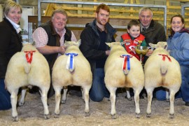 Ballymena Christmas Show Pictures Now Online