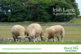 Bord Bia – Irish Lamb