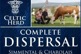 Celtic Herd announce dispersal