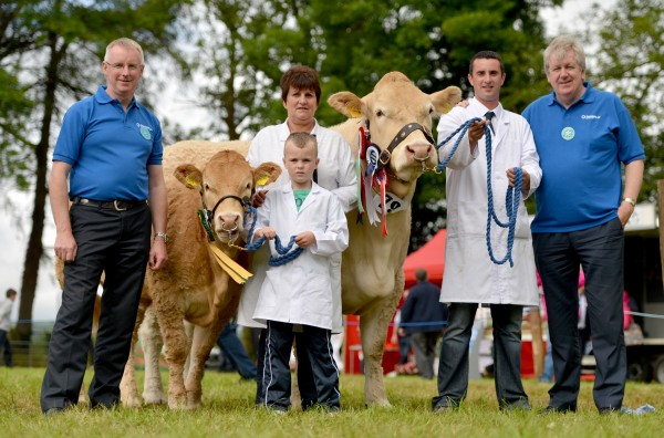 Beef Interbreed Championship went to British Blonde cow Ivaniskey Denise owned and bred by the McElroy family Dromara