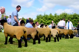 Suffolk National at Armagh photos now online