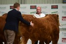 Irish Limousin Sale Roscommon Saturday 25th May