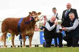 Savage Family lift Interbreed Champion at Balmoral