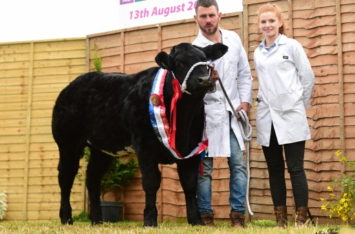Lady Jane a good day out at Tullamore Show