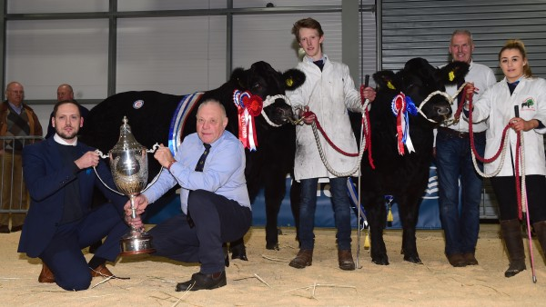 Smyth Family lift Overall Champion at Allams show with Killen Family taking the reserve spot. More images click the link below.