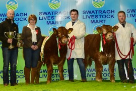 Rodgers Family take Championship honours at NI Limousin Calf Show